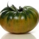 Tomate recolect